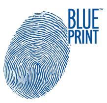 Especialista en el vehiculo asiático  Blue Print